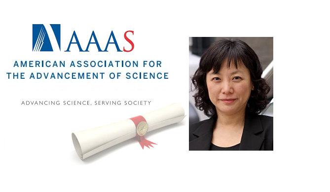 Cao Named AAAS Fellow