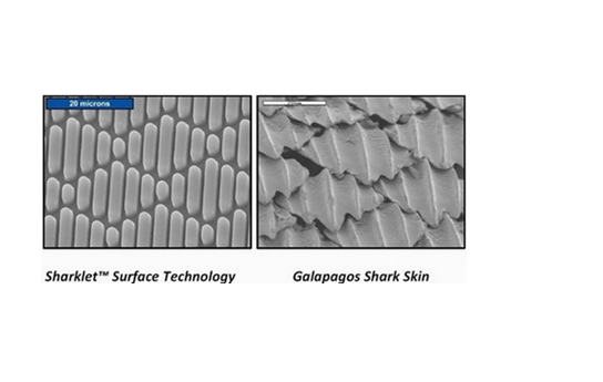 Bacteria-Proof Textured Surfaces for Medical Applications